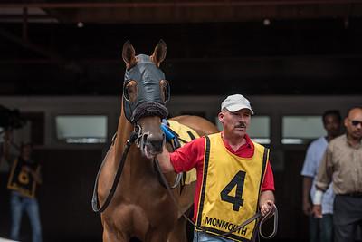 Horse Racing 2015