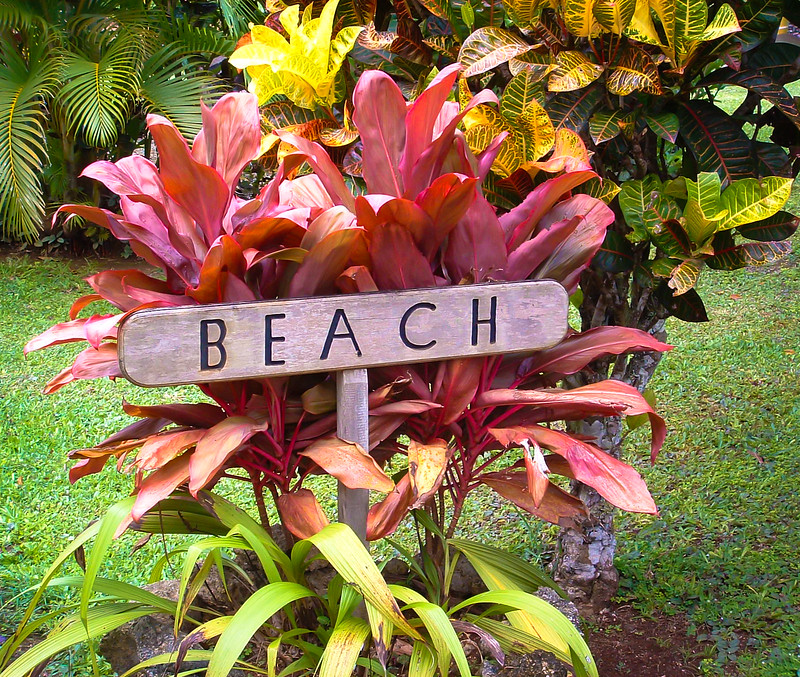 Namale Beach Sign