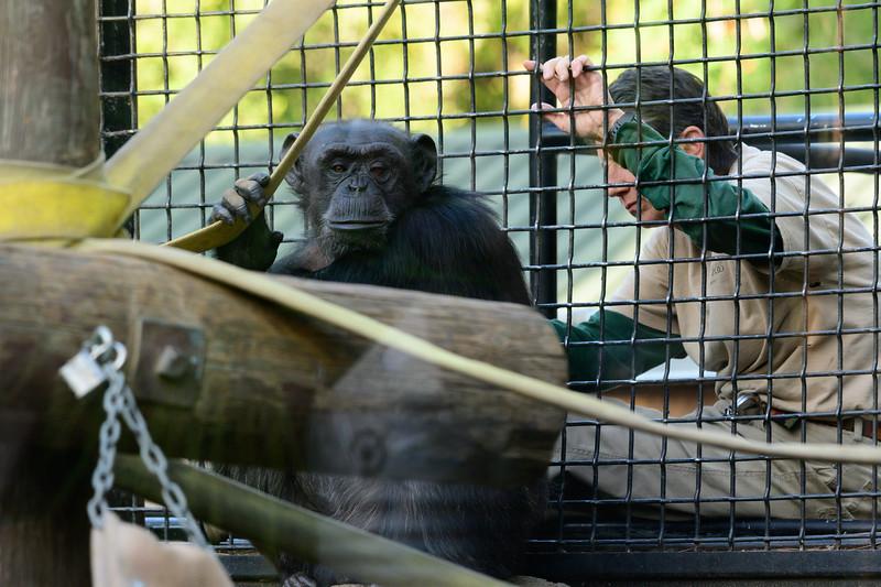 Oakland Zoo-71148-7.jpg