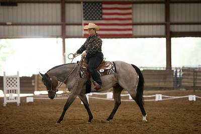 Horse 48