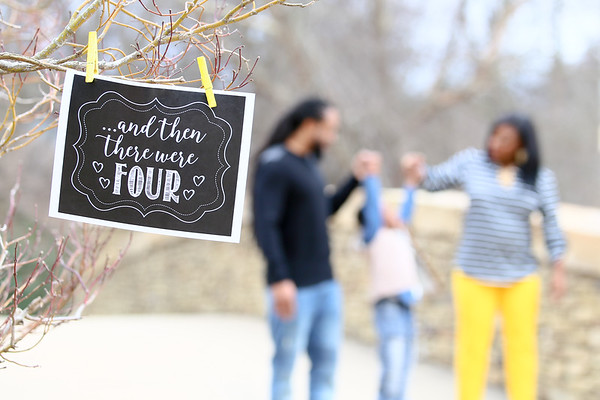 Green Family Announcement 2018