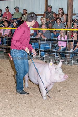 July 15 Hog Final Judging