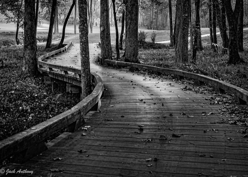 Bridge over Marshland