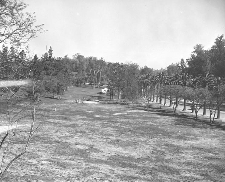 1962, Open Lawn