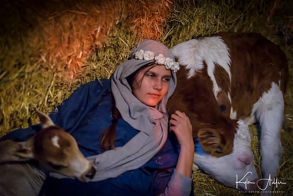 Bethlehem AD 2017