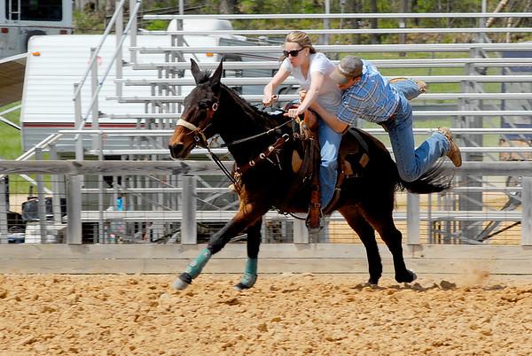 2016 Riding Mule Show