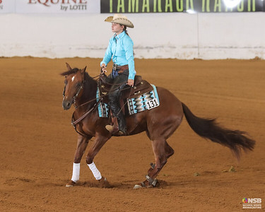 2021 North American Reining Stakes