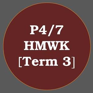 P4/7 HMWK T3