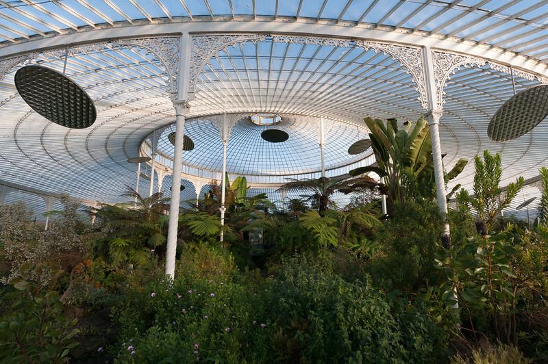 Inside the Glasgow Botanic Gardens in Glasgow, Scotland