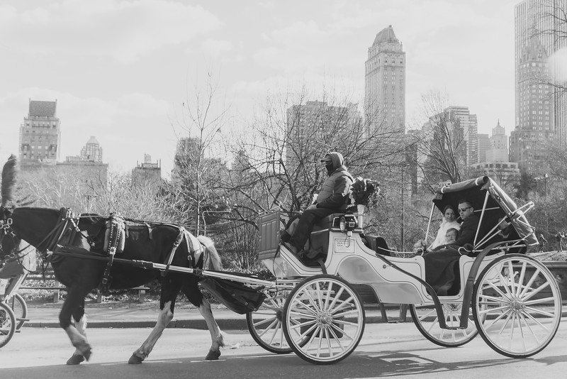 Billie & Brad - Central Park Elopement-14.jpg