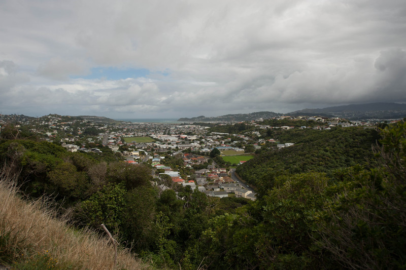 Wellington5772.jpg