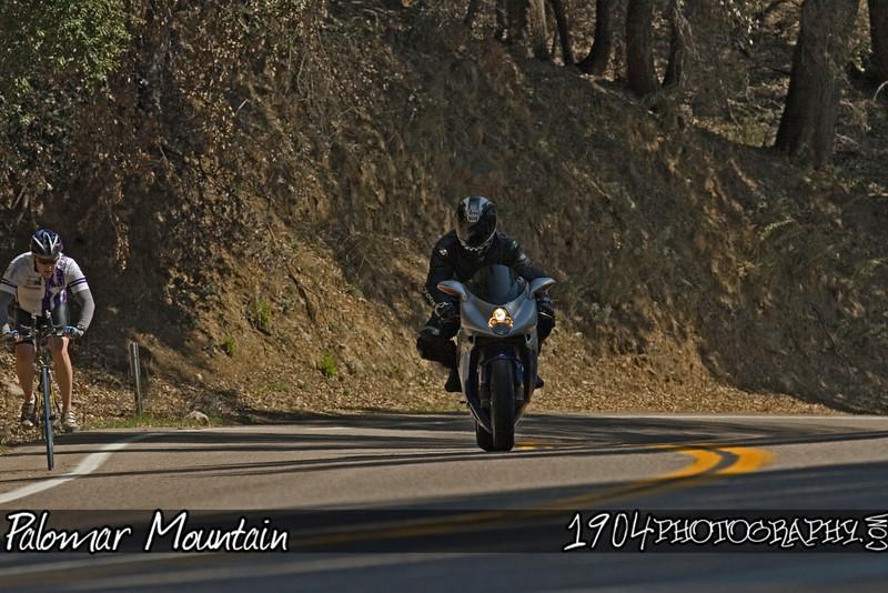 20090308 Palomar Mountain 094.jpg