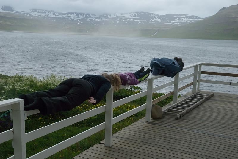 Plank?