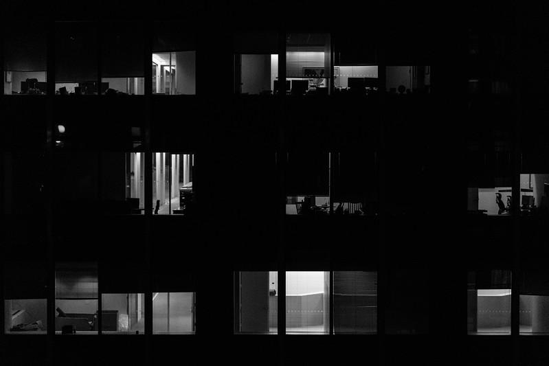 Building windows across.jpg
