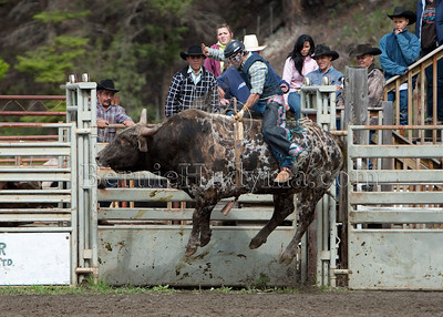 Bull Riding- Saturday