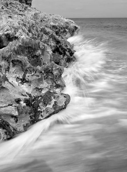 Coquina Rocks and Wave, Blowing Rocks Preserve, Hobe Sound, Florida (39239-BW)