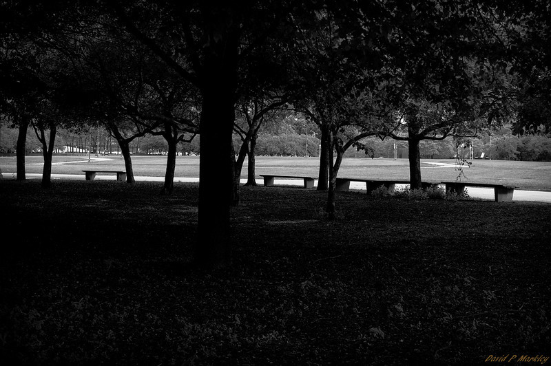 Under Tree Seating