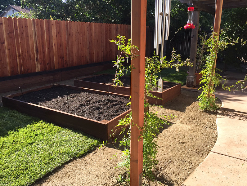 yard done.jpg