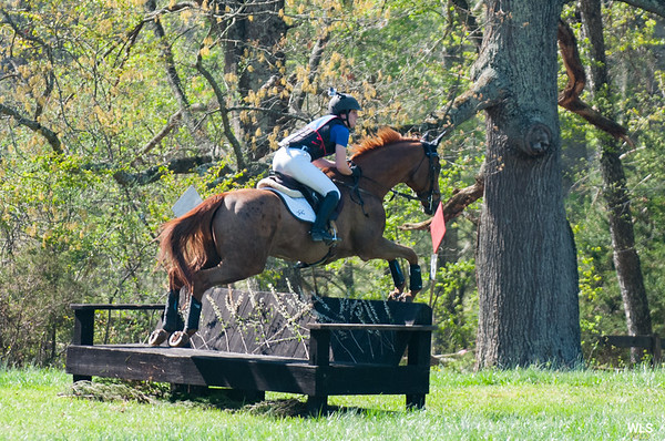 DRHC  INDIVIDUAL RIDERS  IN HUNTS, SHOWS AND CLINICS