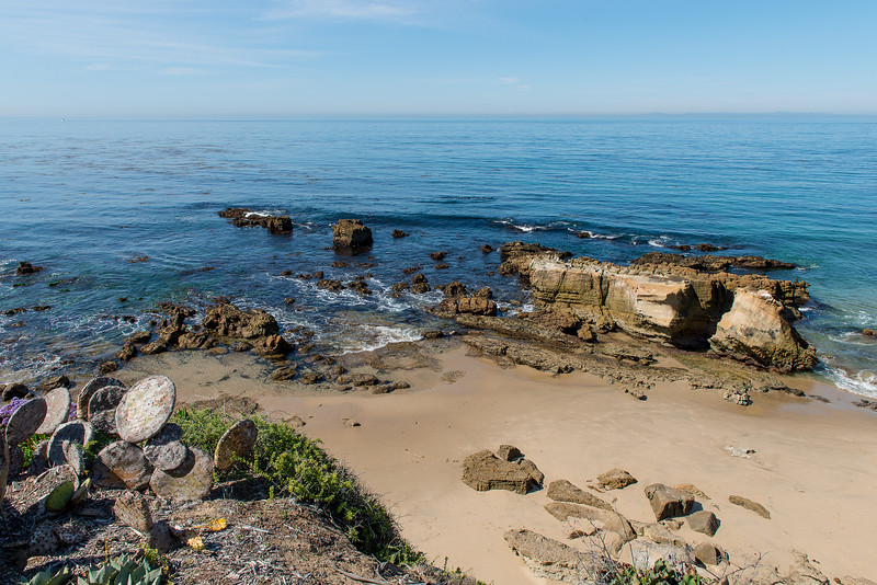California0016.jpg