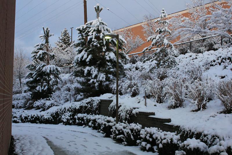 Winter_Scenery_12_19_2012_4111.JPG