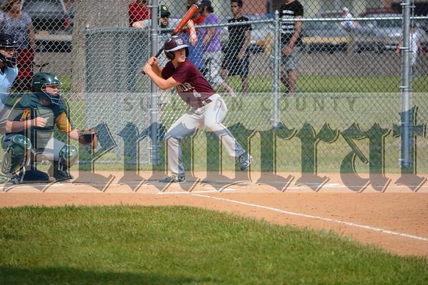 Livingston Manor vs Coleman Baseball Sectionals