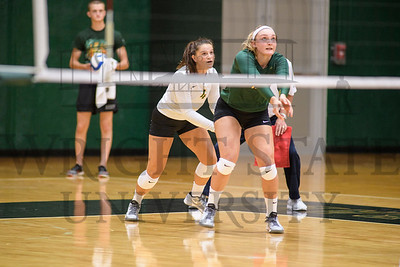 17921 Volleyball Vs SIU Edwardsville 8-26-16