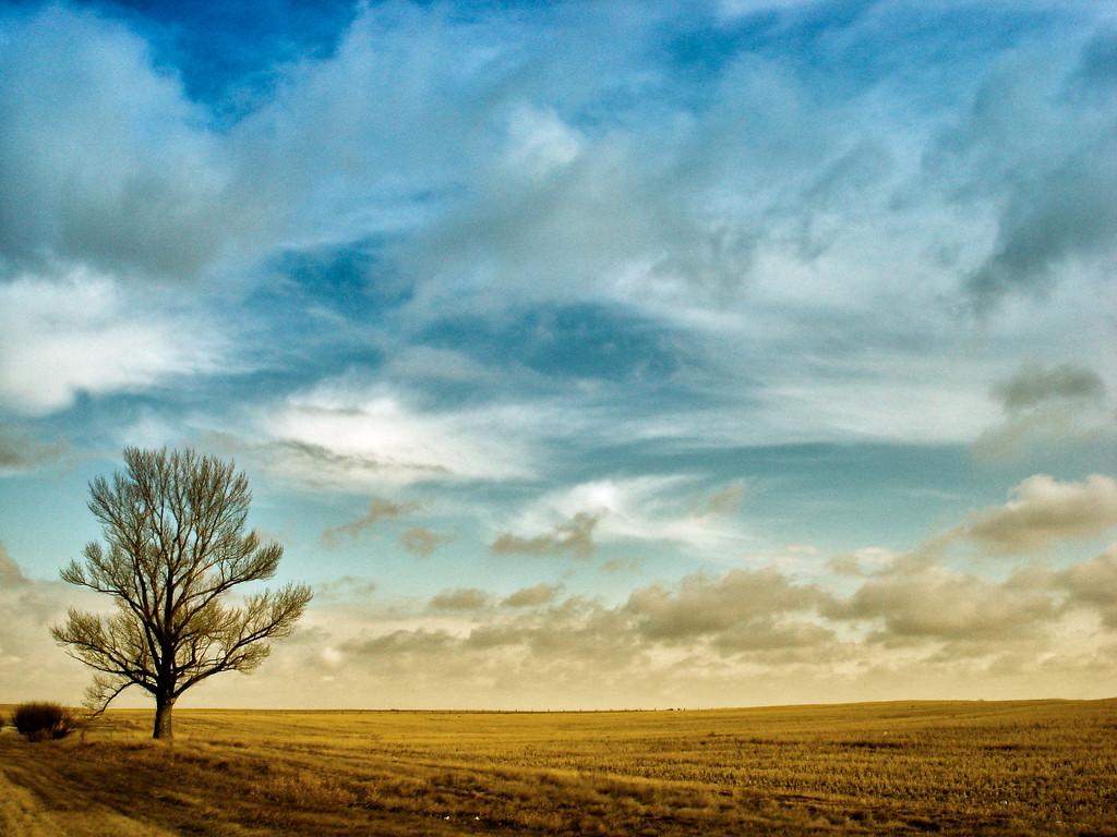 Fall on the Prairies