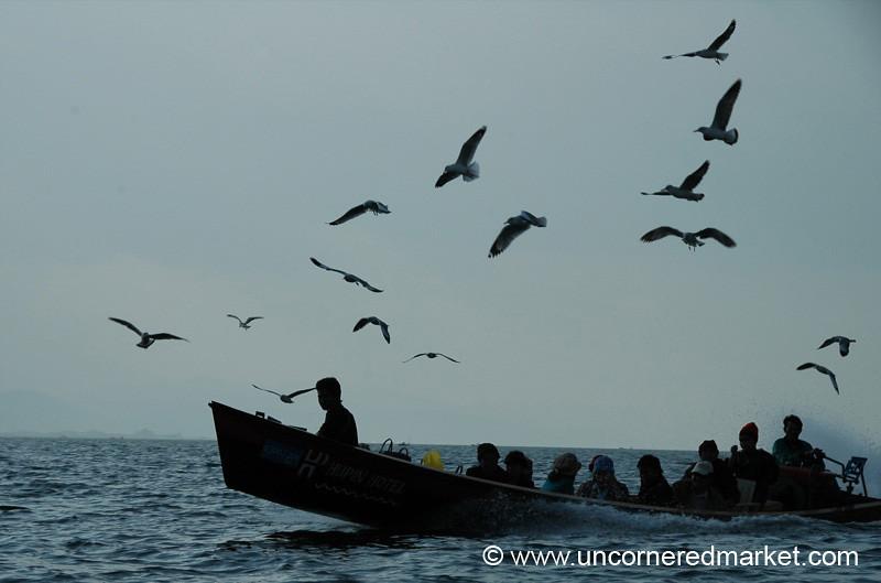 Birds and Boat - Inle Lake, Burma