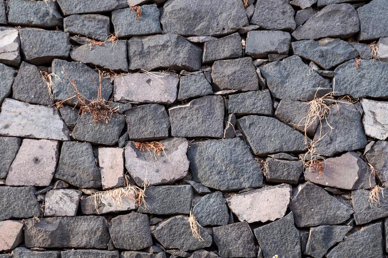 Pompeii 6995.jpg