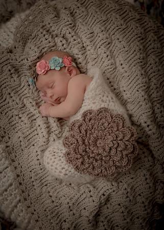 Olivia Wogan Newborn