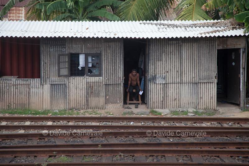 srilanka (9 di 74).jpg