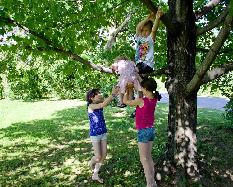Alana and Cassandra help Beverly climb the tree