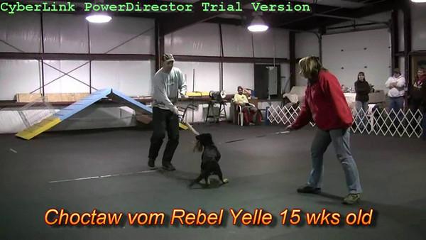 Choctaw vom Rebel Yelle