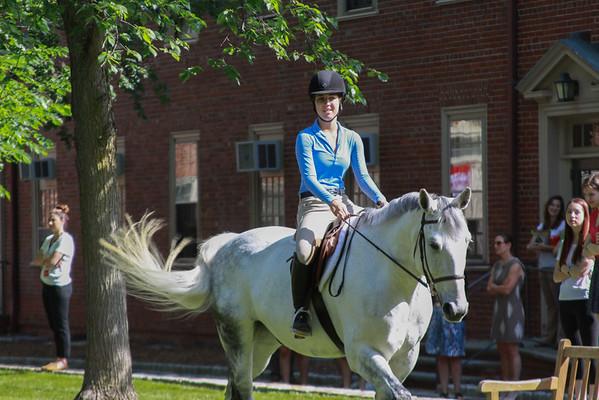 2015 Senior Gallop