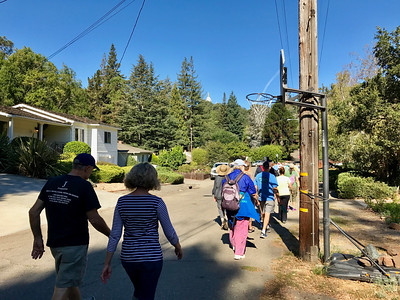 The Hayward Fault--OUP Walk October 2016