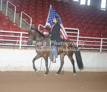 FLAG HORSES SATURDAY