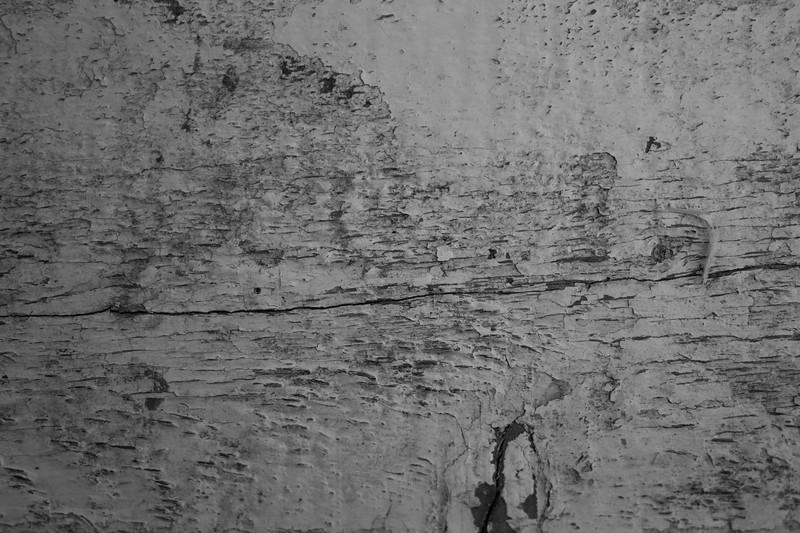 Wood Peeling Paint_2bw.jpg