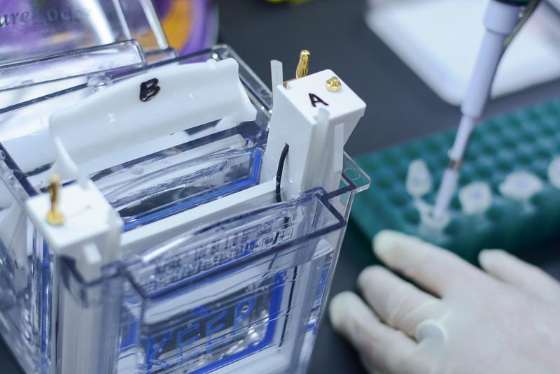 CNRM 2018 labs402.jpg