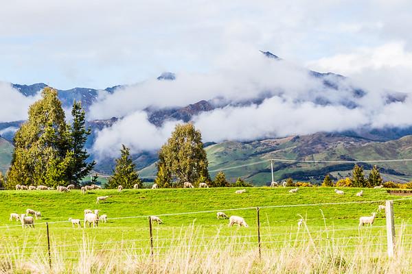 Queenstown - Te Anau
