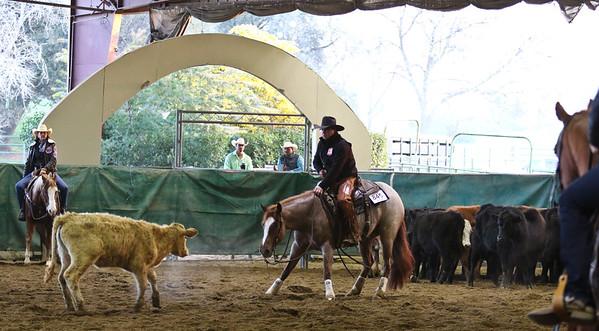 Jr Horse