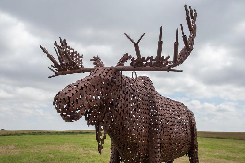 Cherokee Moose