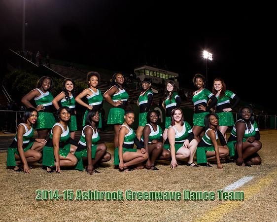 2014-15 Ashbrook Dance Team