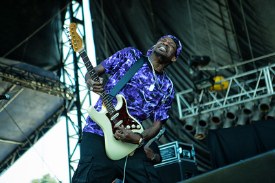 Beale Street  music Festival 2014 -Blues and R&B