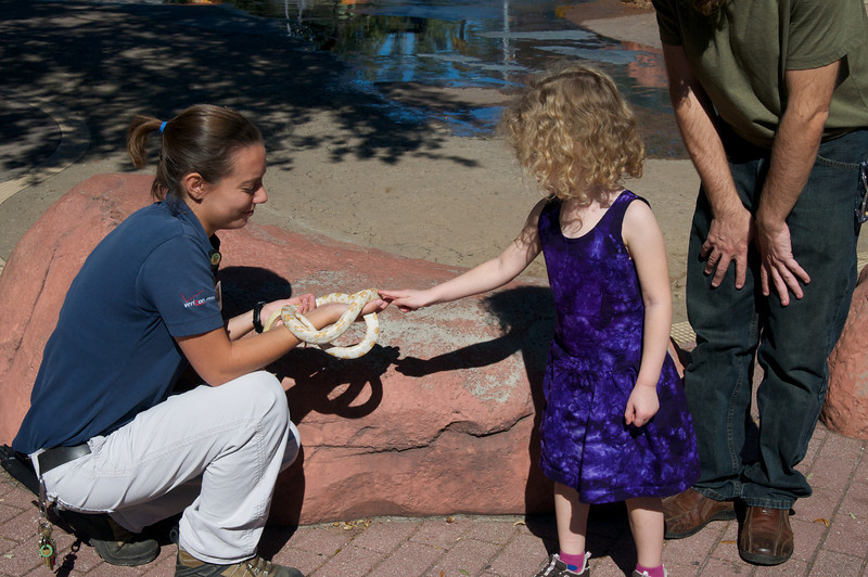 Beverly pets the Snowflake Corn Snake