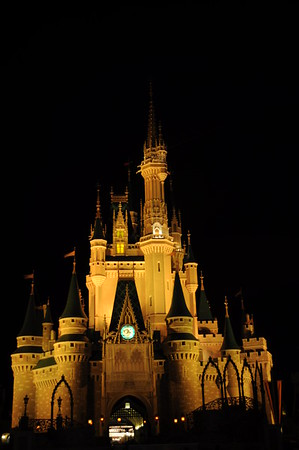 The Magic, The Memories, and You - WDW