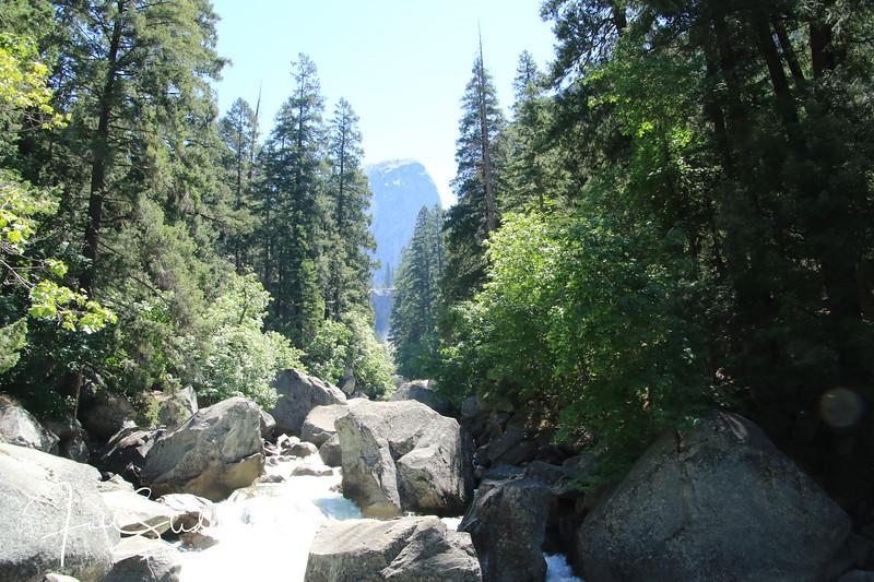Yosemite 2018 -85.jpg