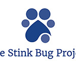 Stink Bug Family Reunion