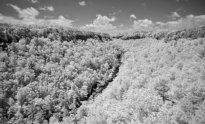 7-30-16 Little River Canyon IR