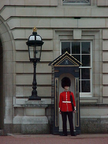 Guard at Buckingham Palace.JPG